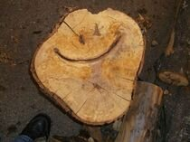 my-husband-says-his-wood-is-forever-alon